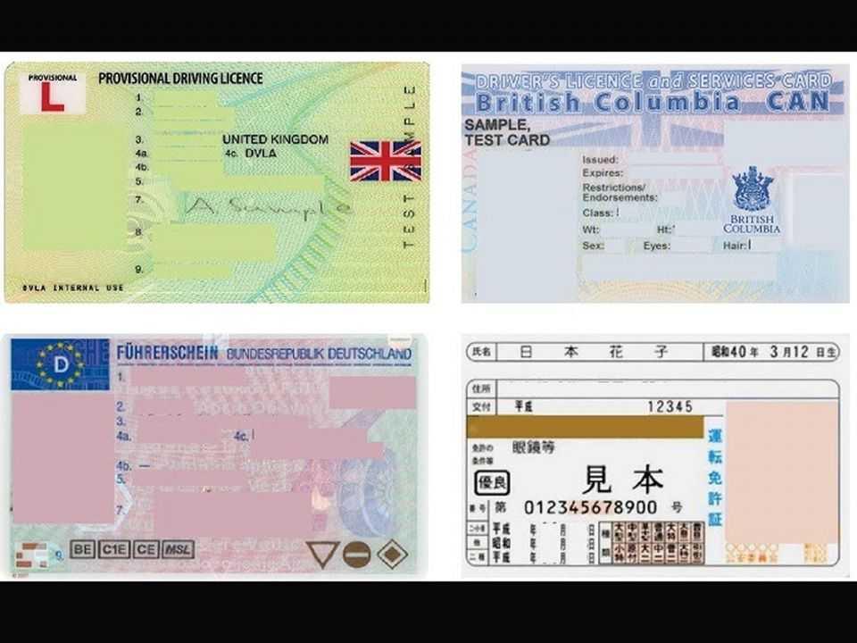 Alguns exemplos de carteiras de habilitação internacionais